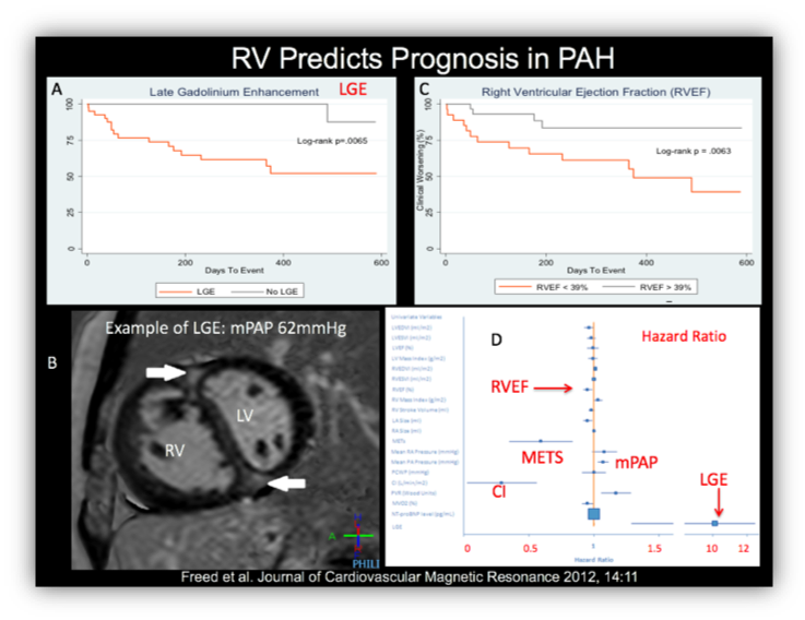 chart showing how RV predicts prognosis in PAH