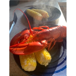 photo of dinner plate with 2 cobs of corn and a whole lobster