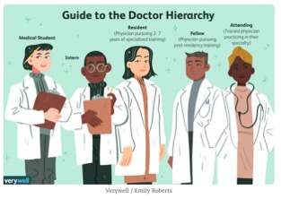 animated photo showing 5 people labelled with physician hierarchy