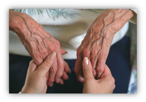 2 people holding hands young and old hands