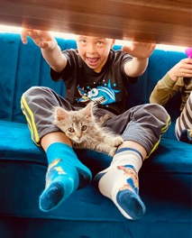photo of young boy looking under a table with kitten in his lap