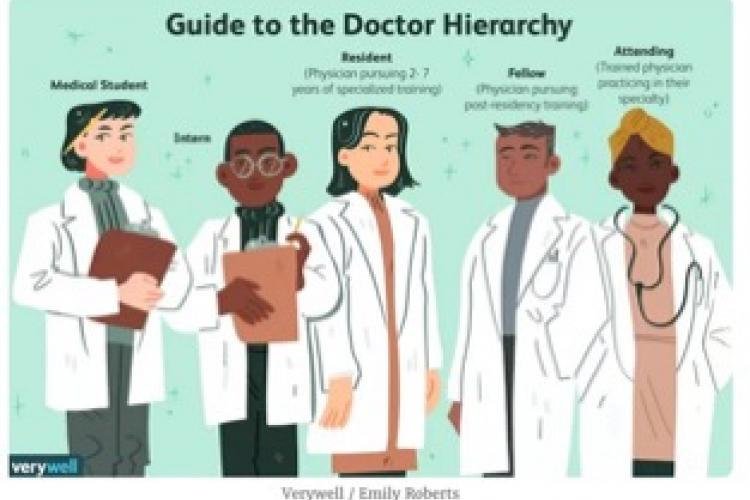 animated photo of 5 people labelled at as medical hierarchy