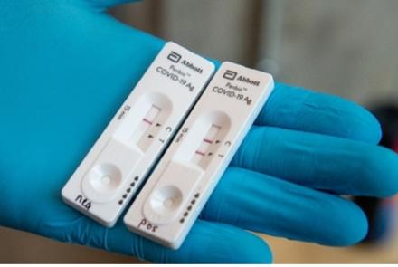 gloved hand holding 2 rapid tests